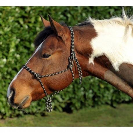 Licol éthologique poney