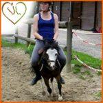 Acheter son cheval: choisir une monture adaptée