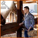 Connaissez vous les métiers du cheval?