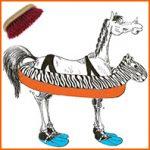 La dermatophilose équine, ou «gale de boue»
