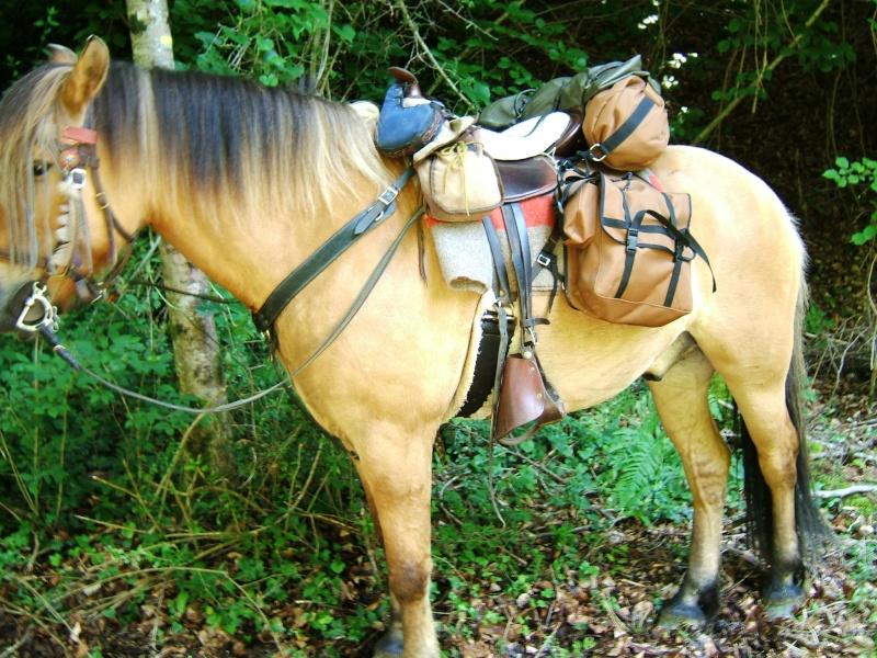 equip cheval rando 2