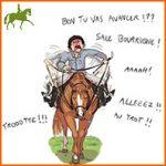 Que sont les aides en équitation?