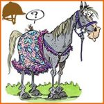 Choisir une couverture avec coupe et options adaptées à son cheval