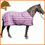 Pourquoi utiliser une couverture pour votre cheval?