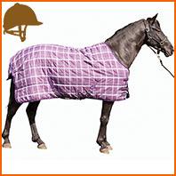 pourquoi-utiliser-couverture-pour-votre-cheval