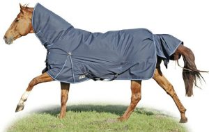 chevaux-equip-hiver-2-3
