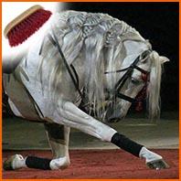 tresser les crins de nos chevaux, la crinière et la queue de nos compagnons