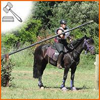 Le TREC à cheval, une discipline en plein essor